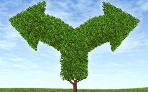 עשר סיבות שכיחות להתמוטטות עסקים
